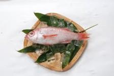 日本海直送地魚いろいろ