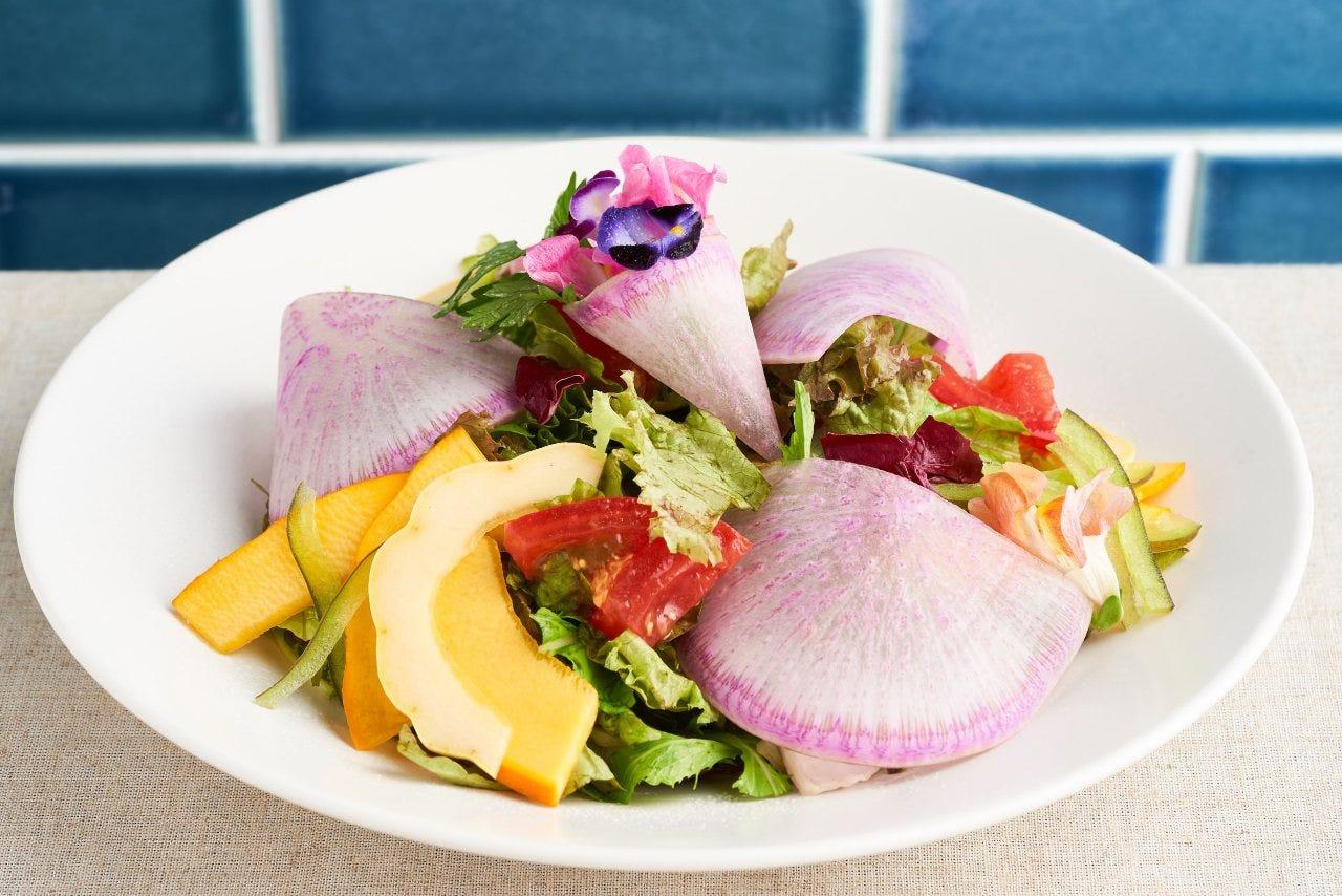 見た目もカラフル、栄養もたっぷりな心も体も元気になるサラダ