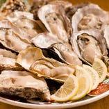 ぷりんぷりんの一年牡蠣。【室津浜】
