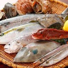 是非食べて欲しい、自慢の魚料理