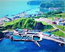 小樽の絶景で楽しむ,水族館!
