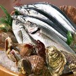 鮮度自慢の旬の魚なここにある!産地直送の新鮮な旬魚【東京都】