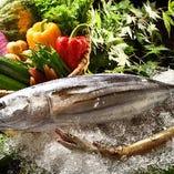"""全国各地から入荷される""""旬の魚"""" """"野菜""""【全国各地】"""