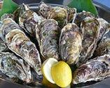 国内外の今いちばん美味しい 旬の牡蠣がいろいろ...
