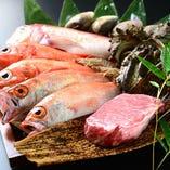 市場直送の鮮魚と国産和牛