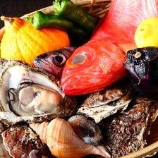 目利きで仕入れ!朝獲れ鮮魚を堪能