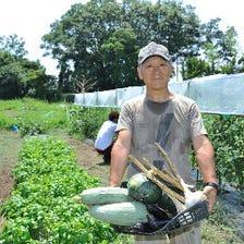 自家農園で採れるお野菜をご堪能!!