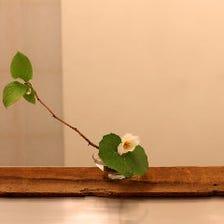 茶懐石に基づく日本の美意識を演出