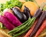 採れたてで新鮮な鎌倉野菜は、味の良さはもちろん、色も鮮やか。