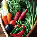 農家直送のお野菜【国内】