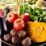 季節の野菜を契約農家から直送!瑞々しさと質が違います!