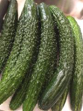 京都加茂産有機野菜