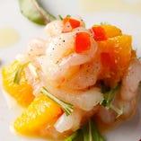 ≪ 魚介のカルパッチョ ≫
