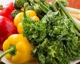 イタリアンは野菜の出番が多い。春には山菜のこごみなども登場。