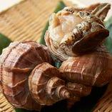 築地直送の新鮮魚介を、握りや一品料理でご堪能ください。