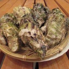 お酒に合わせて愉しむ牡蠣・海鮮料理