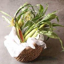 日本の風土が育んだ食材をフレンチに