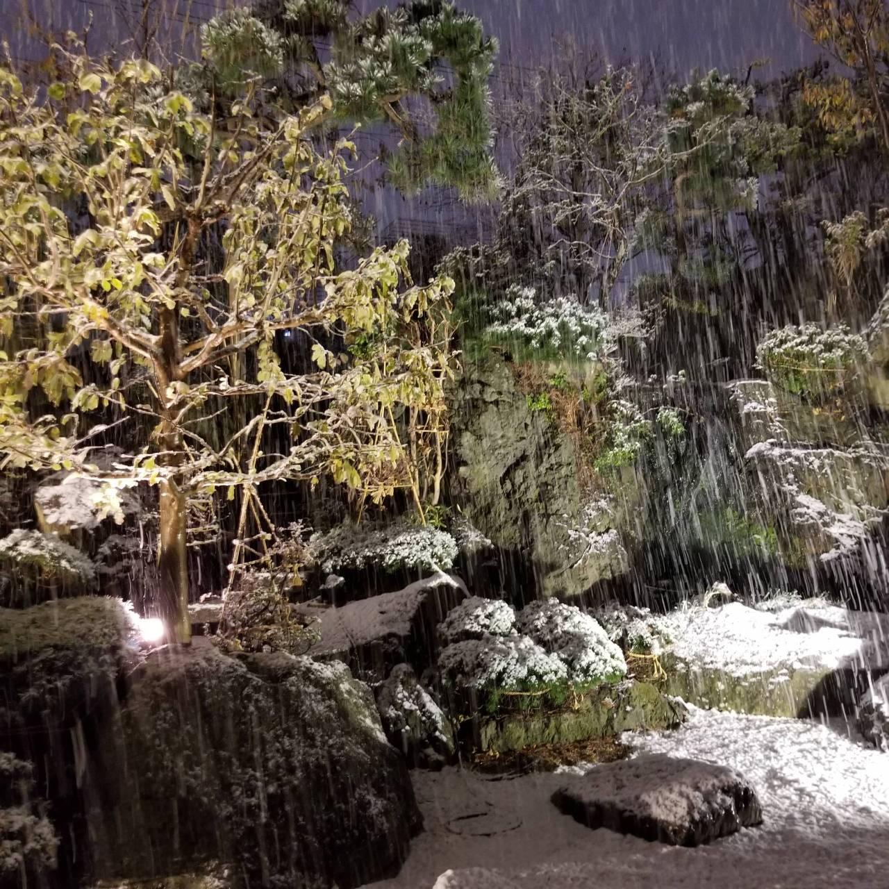 ライトアップされた雪の降る絶景庭園を眺めながらの会食は格別!