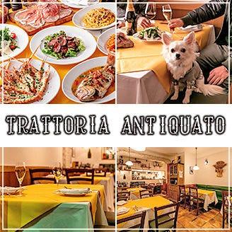 隠れ家イタリアン Trattoria Antiquato(アンティクァート)