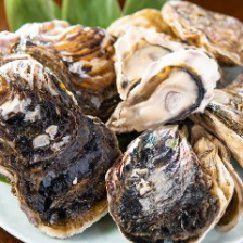 牡蠣を愉しむ宴会ならRicoへ