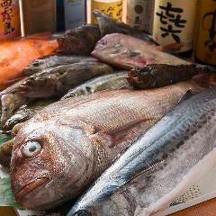 鮮魚と地酒 さくら 西九条