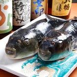 【飲み放題付宴会コース多数】 海鮮満載!季節食材『ふぐ』堪能コースも♪
