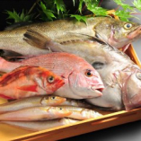 日本全国の港から直送する厳選した季節の新鮮抜群の魚【千葉県】