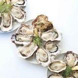 本日入荷の牡蠣の産地・種類・価格は店内のオイスターリストをご覧ください。