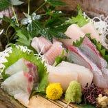 旬の魚を中心に、毎日仕入れる鮮魚を使った一品も味わえます