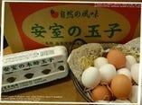 大宜味村直送安室の木酢赤玉子【沖縄県大宜味】