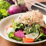 独自ルートで仕入れた新鮮な京野菜・地野菜・上賀茂野菜のサラダ