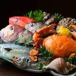 浜松観光のお食事に!新鮮な地魚を味わえるコース料理