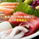 新潟各港から届く鮮魚は、鮮度抜群です!