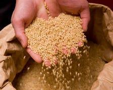 品質管理を徹底した、香り豊かな古米