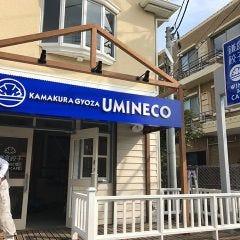 鎌倉餃子 UMINECOの画像