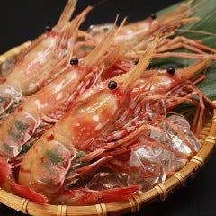 牡丹海老(噴火湾産)