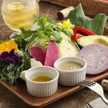 こだわりの野菜を使ったバーニャカウダー、どれも色鮮やか