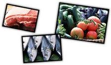 生鮮野菜・魚介類・肉類