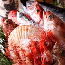 ◆水産卸・直営◆朝〆・一番セリ旬魚