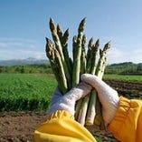 《直営ファーム》 直営農場から届く野菜は、元気いっぱい!