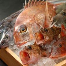 接待や会食におすすめの鮮魚料理