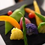 その日仕入れた旬の食材の目にも美しい彩りをお愉しみください