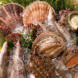 ◆朝獲れ新鮮魚介を堪能!《海鮮しゃぶしゃぶ》コース◆120分飲放付全8品 5,000円(税抜)