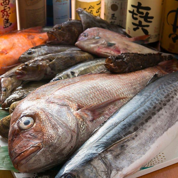 大阪中央市場で美味しい魚を厳選!