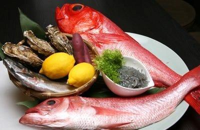 沼津港直送の地魚など