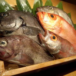 金沢近江町市場から直送!新鮮な魚介類♪【石川県 近江町市場】