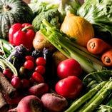 【新鮮野菜】 旬の野菜をたっぷり使った逸品料理をどうぞ♪