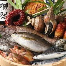 市場の仲卸業者の直営の海鮮料理店
