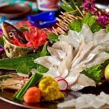 直送の活魚を仕入れる新鮮魚介を提供
