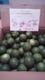 大分県由布町の大野さんから毎年届く無農薬の「大分かぼす」